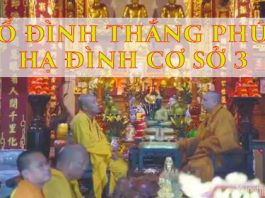 to-dinh-thang-phuc-ha-dinh-co-so-3